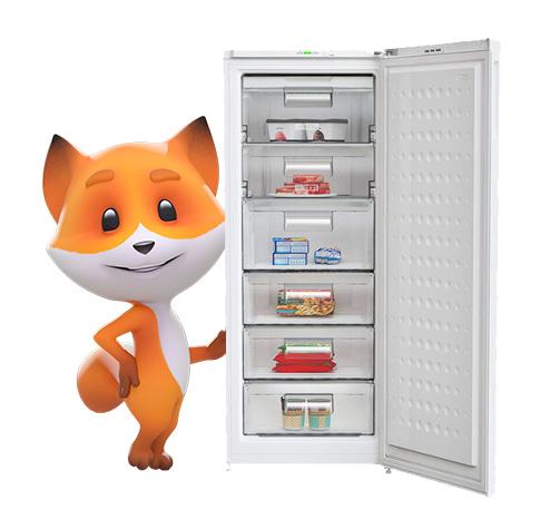 freezer and foxy